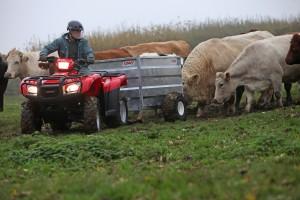 Honda-Quad-ATV-Cheap-TRX500FM-Towing